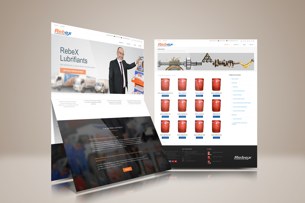 Rebex Lubrifiants dot com Website Design